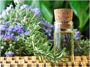 essential oil web