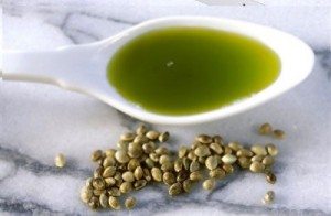 hemp seed oil photo